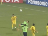 Spettacolare rovesciata del coreano Lee Dong-Gook nella Champions d'Asia