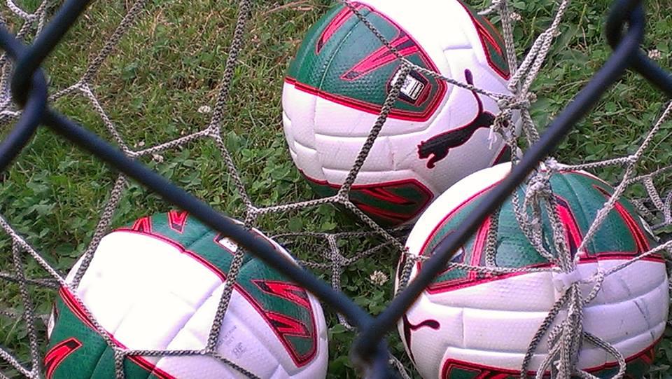 Il pallone ufficiale della Lega Pro griffato Puma (Miccio/TuttoCalciatori)